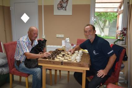 Tierschutzverein St P Lten Dankesch N An Firma Kika
